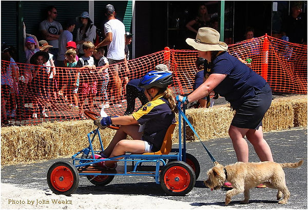 A LARGE 48310 20190224 Upwey Billy Cart