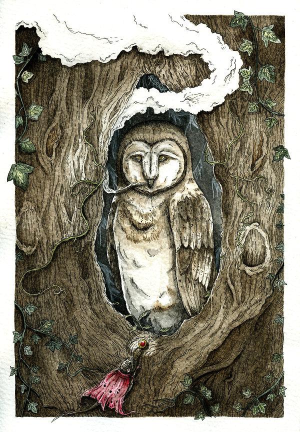 'Seek the Wisdom of the Owl'