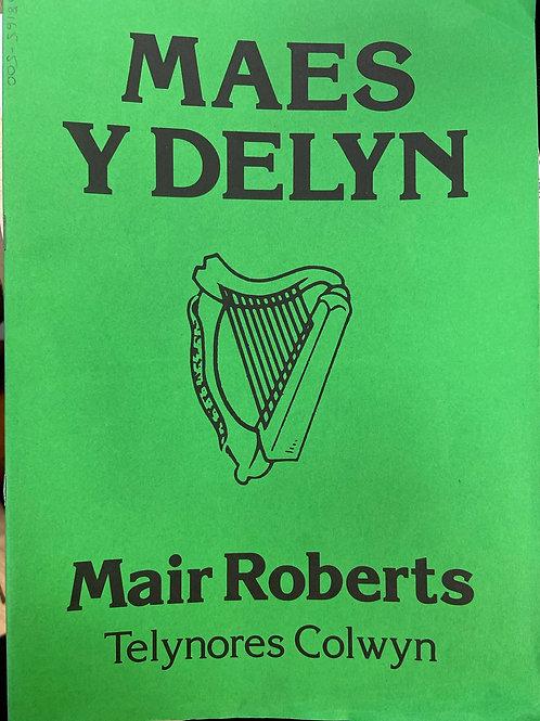 Roberts: Maes y Delyn