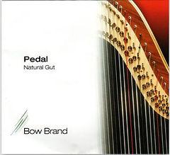 BB pedal gut.JPG
