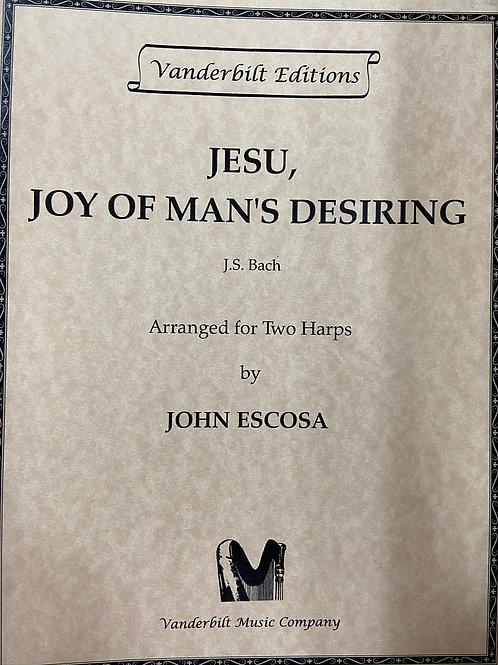 J.S. Bach: Jesu Joy of Man's Desiring 2 harps arr. Escosa