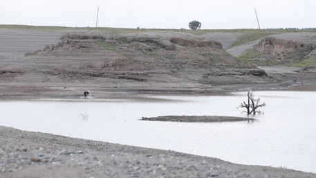 Tigrayan bodies floating, fears of 'many more'