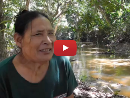 Brazil: Only contacted member of threatened tribe denounces impending genocide
