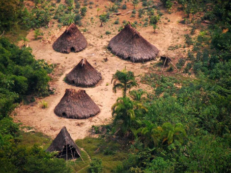 Major victory for Peru's indigenous peoples: new uncontacted reserve created