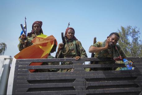 TIgray forces struck alliance with Oromo militants