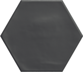 HEXAGON BLACK_15x17,3.tif
