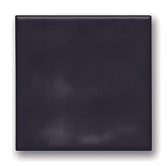 15x15 flat black.tif