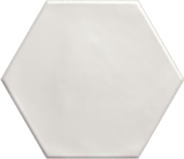 HEXAGON WHITE_15x17,3.tif