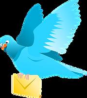 pigeon-42590__340.png