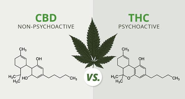 difference-CBD-THC.jpg
