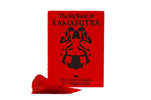 The Big Book of Kamasutra