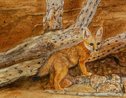 Vonnie West Desert Fox
