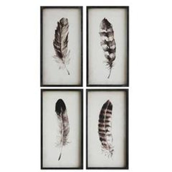 FRAMED FEATHER PRINTS (SET-4)
