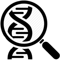 research logo.png