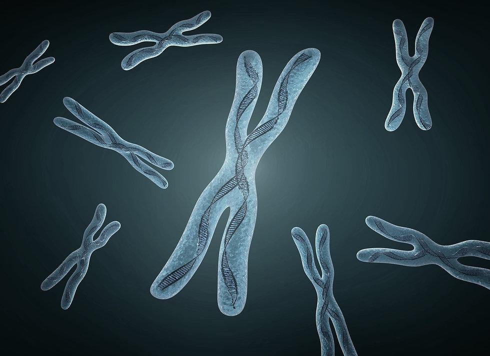 cromosoma sfondo 2.jpg
