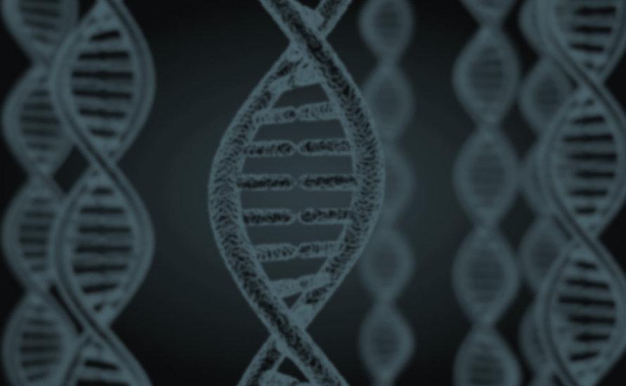 cromosoma DNA