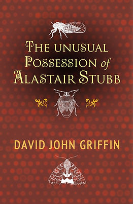 The Unusual Possession of Alastair Stubb front cover.jpg