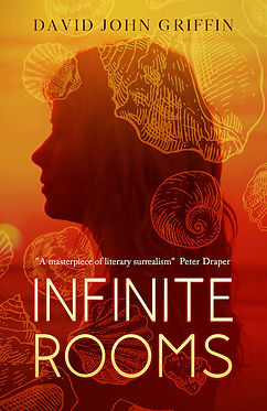 Infinite Rooms front cover