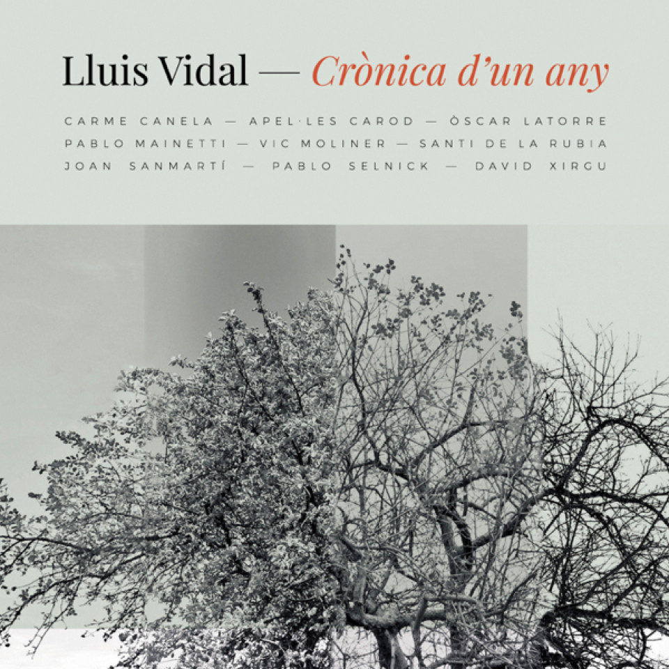 crònica d'un any - Lluís Vidal