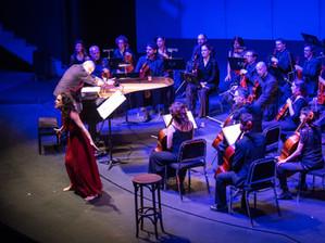 EN CLAU DE FLOR Orquestra de Cambra de Granollers, Berta Vidal