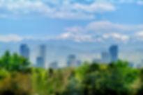 DenverSkyline_Trees (1).jpg