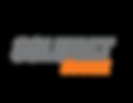 logo slm stone.png