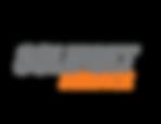 logo slm service.png