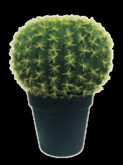 Cactus (45 cm.)