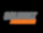 logo slm  aluminium.png