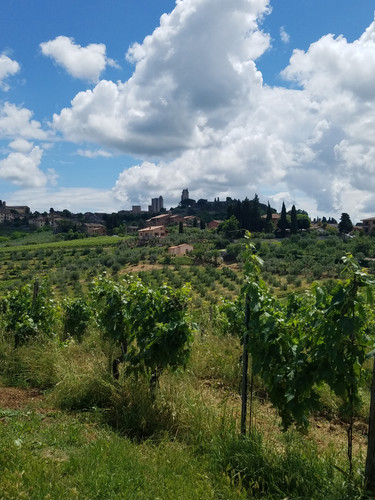 Small Group Tour of Tuscany