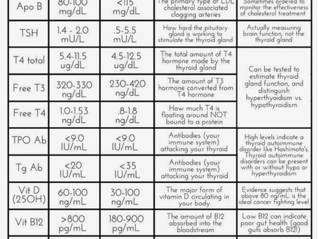 Understanding thyroid tests