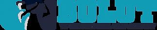 bulut akademi_logo.png