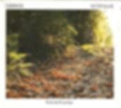 cd-victor-gulin-caminhos-novo-D_NQ_NP_20