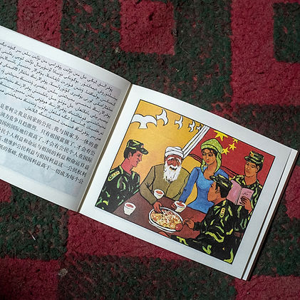 RF_xinjiang2015_05.jpg