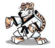 Tang Soo Do tijgers Leeuwarden Techum karate