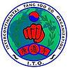 Intercontinental tang soo do organization