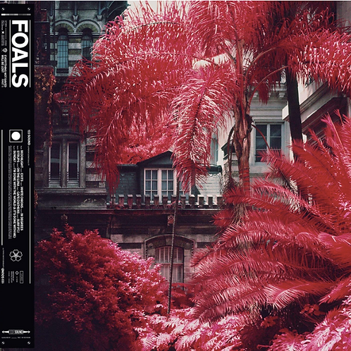 Foals / Everything not saved Will be Lost 1