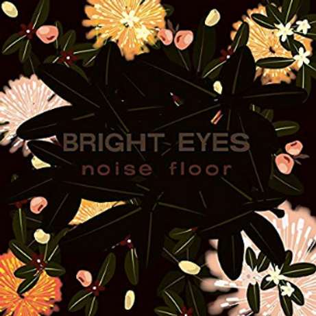Bright Eyes / Noise floor (rarities 1998 - 2005)