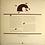 Thumbnail: Anthony Braxton / For trio