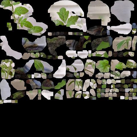 model_material0000_map_Kd.jpg