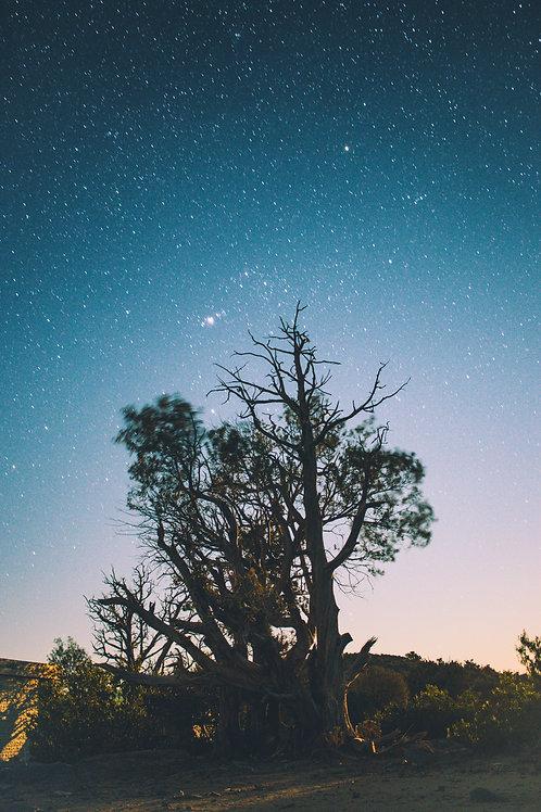 Astro in Oman