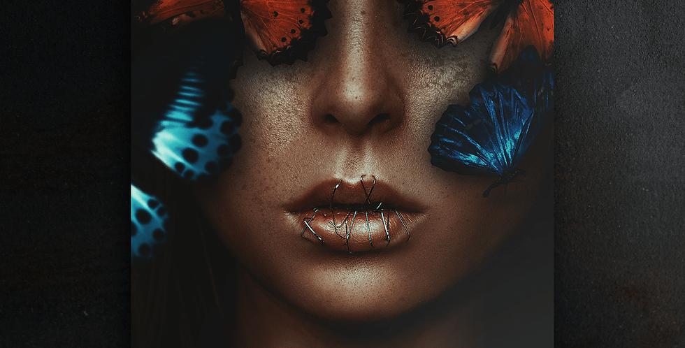 Wanddeko: Butterflies