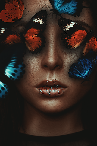 IMG_1177-Schmetterlinge-Web_op.png