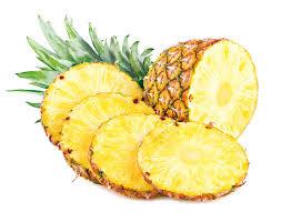 【中醫面面觀】菠蘿(鳳梨)在《本草綱目》是否有記載?-關浩基醫師