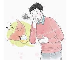 【貓媽行醫手記】脾胃(二)