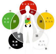【貓媽行醫日記】天然五味五色 與人工色素香精(一) -貓媽