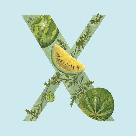 X is for Xigua
