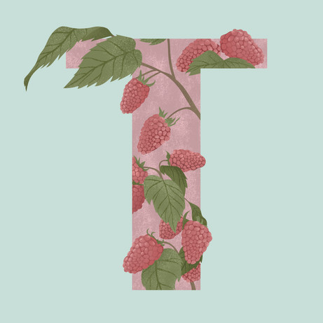 T is for Tayberry