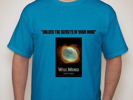 WISE MIND DEVELOPMENT T-SHIRTS - Only $20!