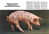 FosterWheeler Campaign-Pig.png
